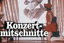 Amateur-Konzertmitschnitte auf Webvideoplattformen